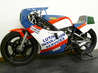 481 1981 Yamaha TZ250 Grand Prix Race Bike Icon